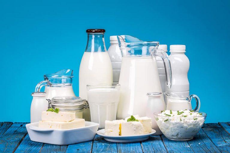 productia de lactate si branzeturi start up nation