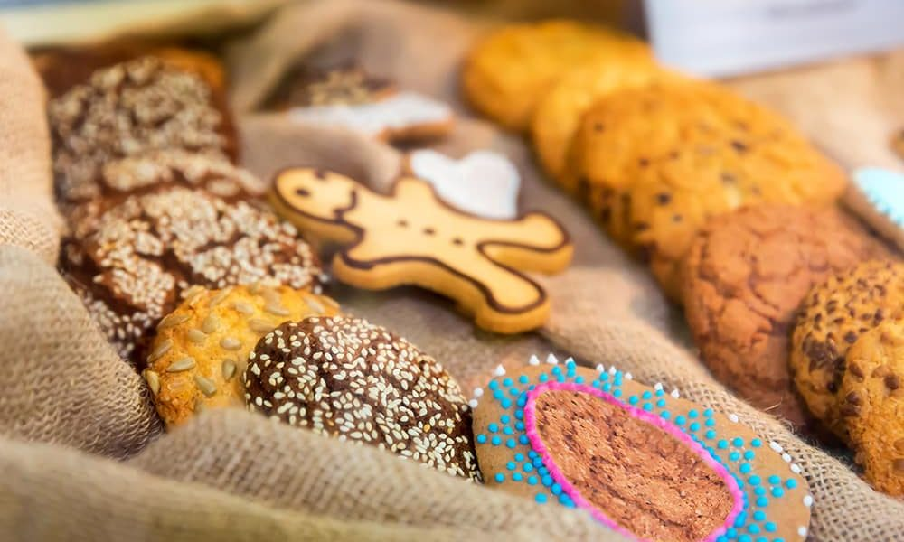 fabricarea de biscuiti start up nation