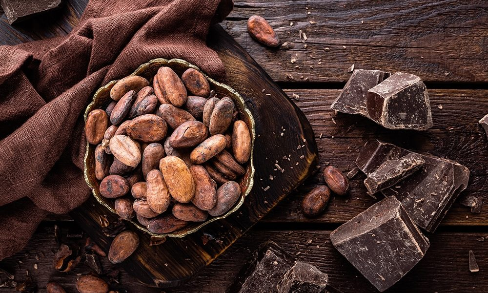programul start up nation productie ciocolata
