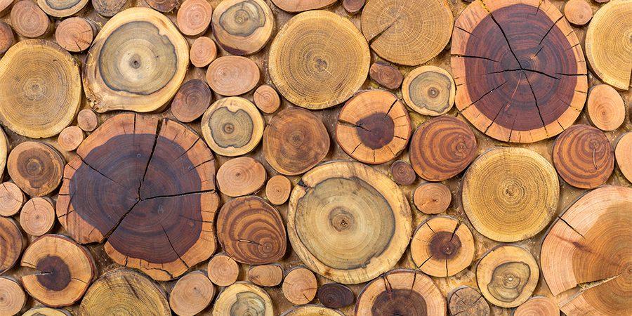 obiecte decorative din lemn, tamplarie start up nation