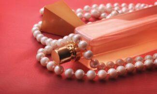 fabricarea parfumurilor start up nation